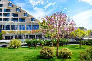 The lawn with blooming tree and building of luxury hotel, Antaly