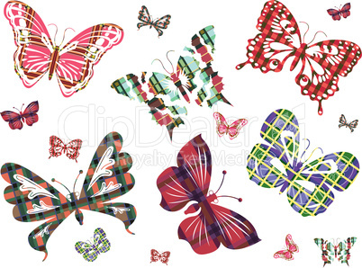 Six different butterflies with Celtic ornament