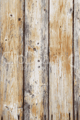 Grunge color wooden wall pattern