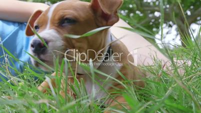 Child with a puppy lying on grass in the garden