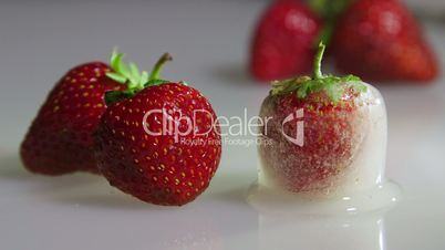 Fresh and frozen strawberry closeup time-lapse