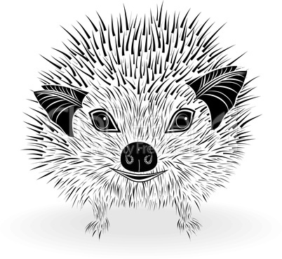 hedgehog head vector animal illustration