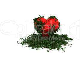 Ivy red heart