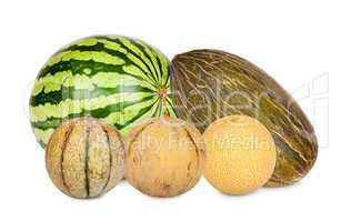 Fünf verschiedene Melonensorten isoliert