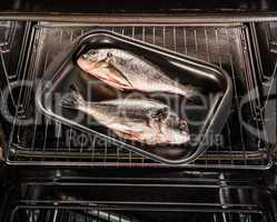 Dorado fish in the oven.