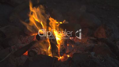 Burning Campfire at the Danish Landside // HQ