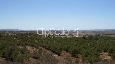 Panoramic View of the Valley, Central Portugal