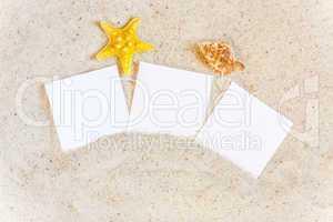 Drei leere Sofortbilder liegen mit Muscheln im Sand
