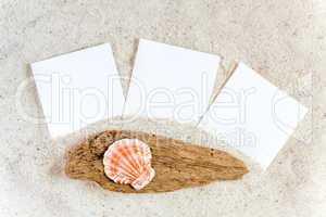 Drei leere Sofortbilder liegen am Sandstrand