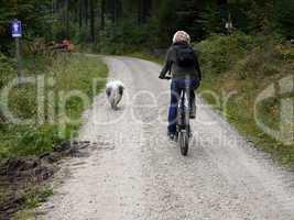 Rad fahren Hund Frau