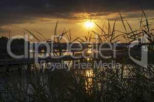 Blick durch Schilf auf Bootshafen bei Sonnenuntergang.