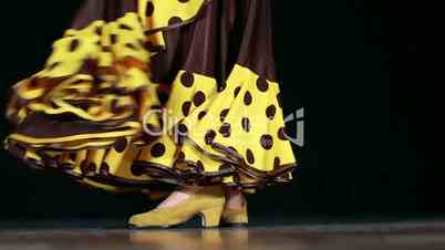 Typical Spanish Folklore Flamenco Dance
