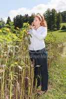 Mollige, junge rothaarige Frau kontrolliert die Reife eine Sonnenblume