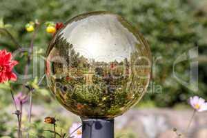Silfie with golden globe