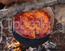 Cooking borscht (Ukrainian traditional soup) on campfire