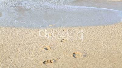 Foot trace on beach