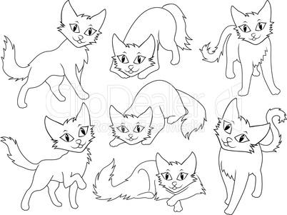 Seven funny cartoon cats
