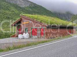 Beautiful scenario of Norway countryside in summer season