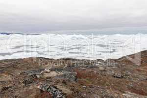 Arctic landscape in Greenland with icebergs