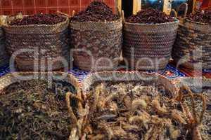 egypt sice market