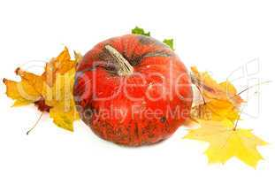 Red ripe pumpkin and autumn yellowed leaves