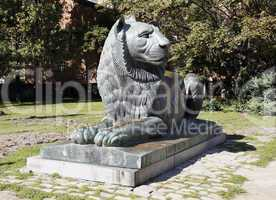 Lion sculpture in Sofia, Bulgaria
