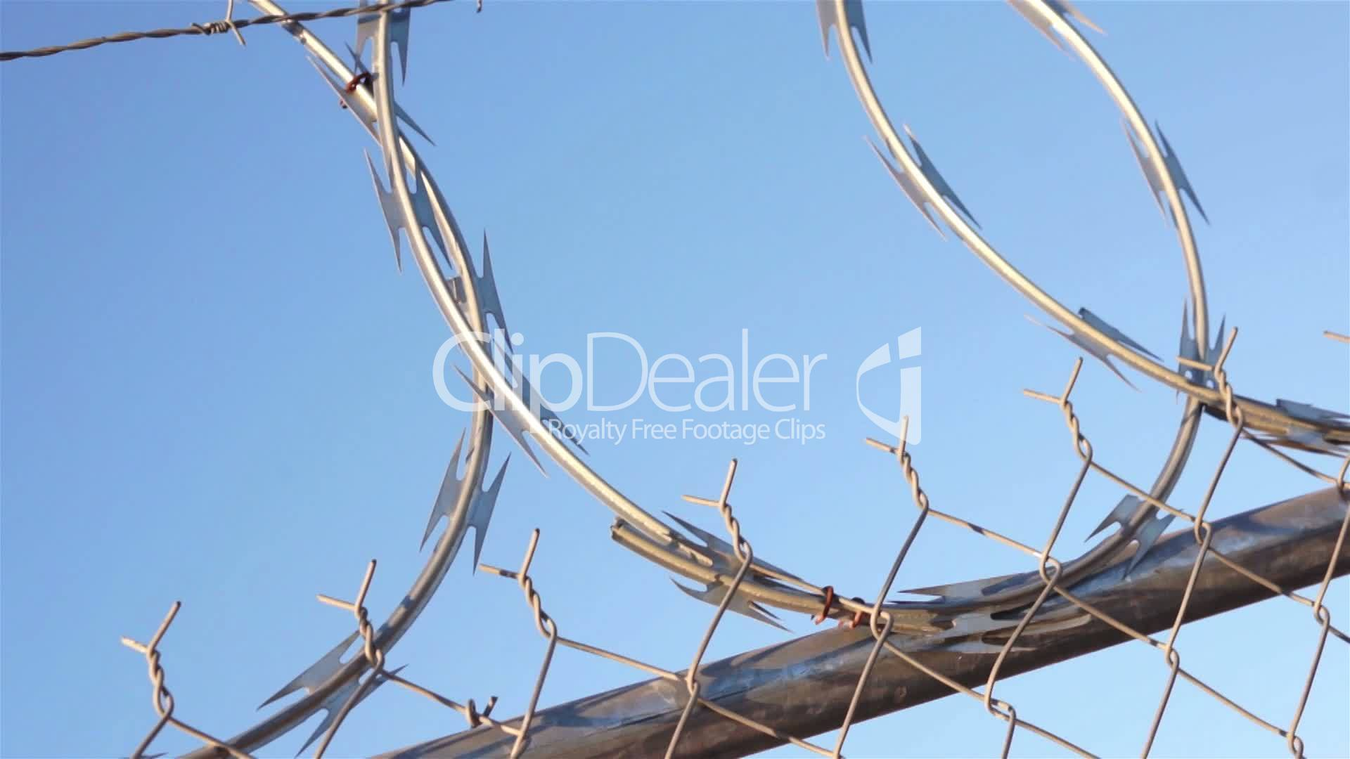 Best Barbed Wire Bra Pictures Inspiration Electrical   Jzgreentown.com