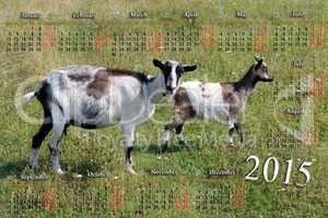 calendar for 2015 year with goat and kid