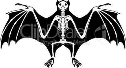 Fledermaus