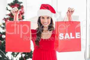Brunette showing sale bag and shopping bag