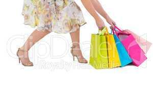Elegant woman holding shopping bags