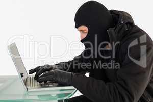 Robber sitting at desk hacking a laptop