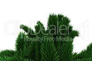 Digitally generated fir tree branches