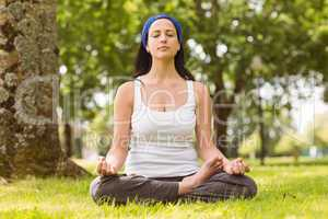 Fit brunette sitting in lotus pose on grass
