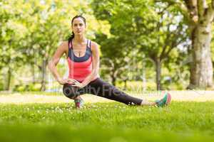 Fit brunette stretching on the grass
