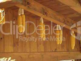 Erntezeit, Maisdekoration