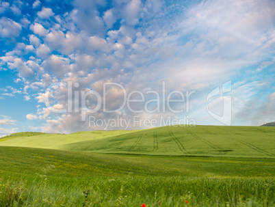 Countryside hills on a beautiful day