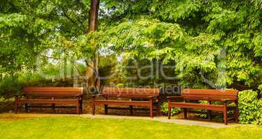 Empty benches in a beautiful park. Serenity and loneliness conce