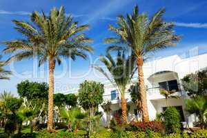 The holiday villas at luxury hotel, Sharm el Sheikh, Egypt