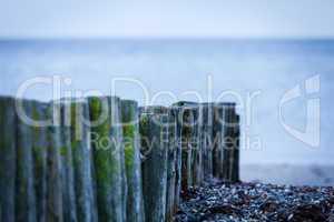 baltic sea background evening wooden wave breaker beach