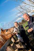 Elderly couple petting a horse in a paddock