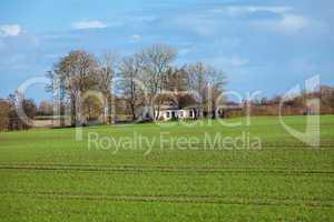 beautiful landscape of green farmland and blue sky