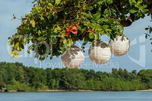 Three paper lanterns hanging form a tree