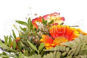 Vivid orange gerbera daisy in a bouquet