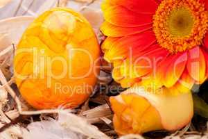 Vivid orange Easter egg with a gerbera and rose