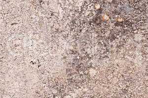 natural background texture material outdoor