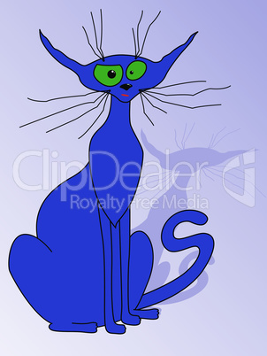Blue cat sitting