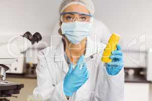 Food scientist injecting a corn cob