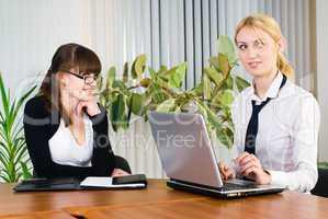 Confident business ladies