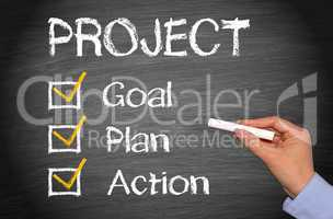 Project - Goal Plan Action
